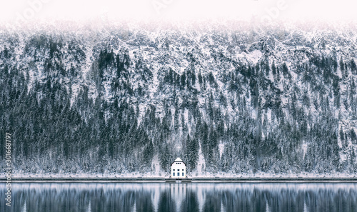 Foto op Plexiglas Wit Winter at Plansee Lake in Austria