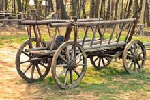 Old Vintage Horse Or Donkey Ca...