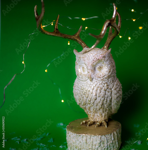 White and gold owl with golden warm fairy lights on green background Canvas Print