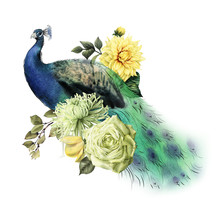 Flowers With Peacock, Watercol...