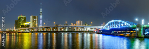 Obraz Cityscape of Tokyo skyline, panorama view of office building at Sumida river in Tokyo in the evening. Japan, Asia. - fototapety do salonu