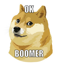 Ok Boomer - Doge Internet Meme...