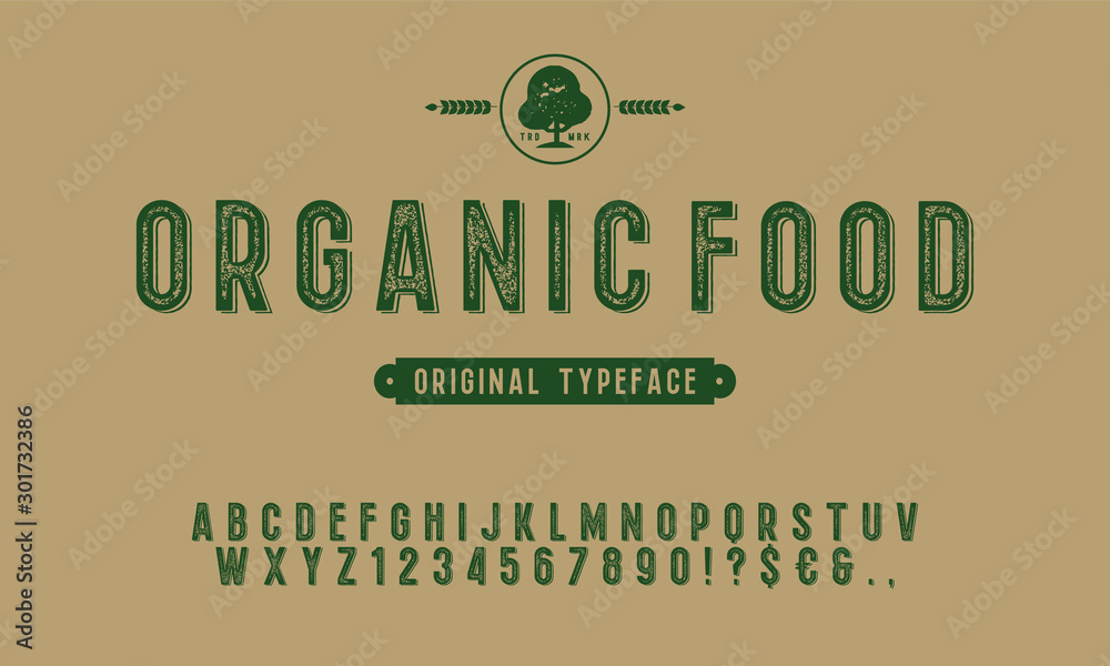 Fototapeta Hand Drawn Rustic Farm Fresh Vector Typeface.Organic alphabet with imprint effect. Retro grunge marker for organic packaging design. Stamp lettering.Vintage Retro Textured Decorative Type.