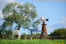 Solar Water Well With Texas Windmill, In Front Of A Green Beautiful Tree, With Old Vintage Windmill On Ground In Front Of Fence.