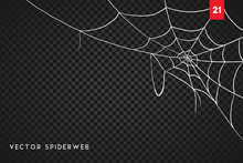 Halloween Cobweb And Spiders I...