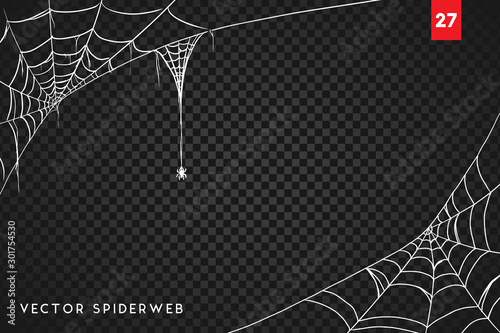 Obraz na plátně Halloween cobweb and spiders isolated on dark transparency background