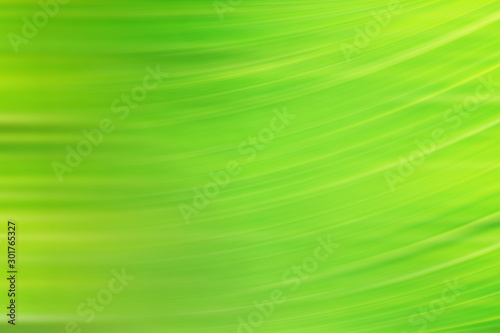 Obraz spring light green blur background, glowing blurred design, summer background for design wallpaper - fototapety do salonu