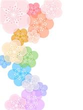 梅の花の素材