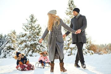 Fototapeta na wymiar Happy family sledding in the park in winter.