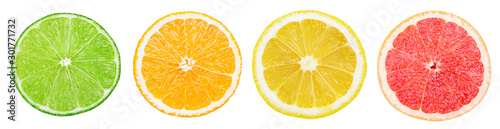 Isolated citrus slices. Fresh fruits cut in half (lime, orange, lemon, grapefruit) in a row isolated on white background with clipping path