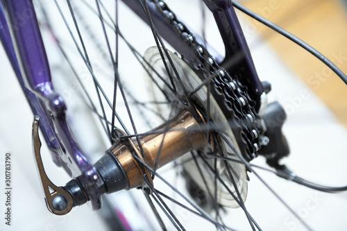 Fotografia, Obraz  Bicycles Rear Drive System - closeup flywheel and transmission