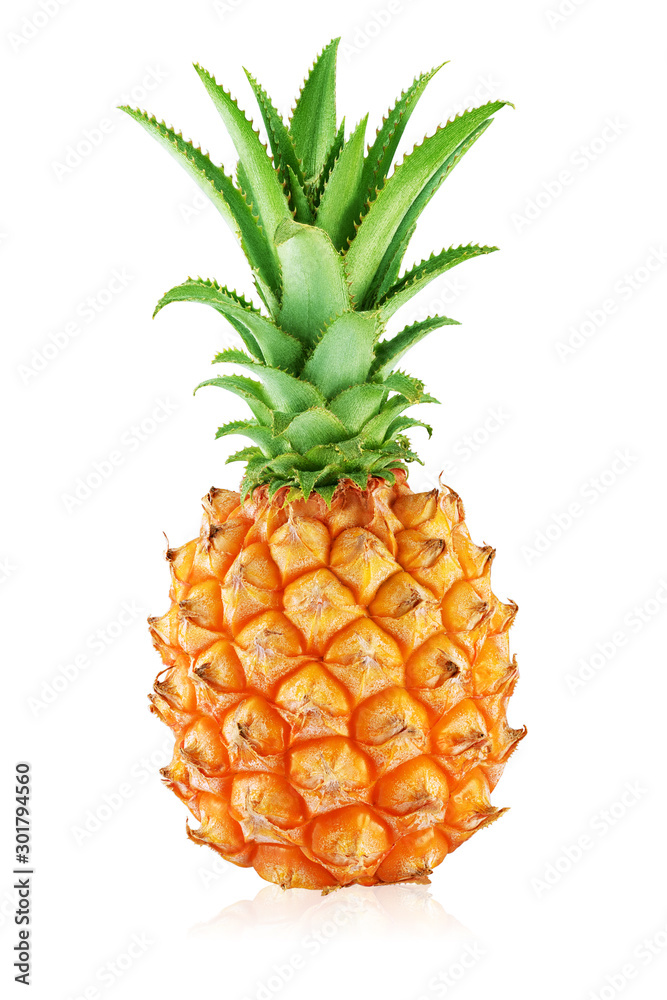Fototapeta One whole pineapple with leaves isolated on white