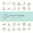 Large set of linear vector icons of human organs with signatures.