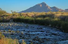 Clark County Wetlands Park, Las Vegas, Nevada