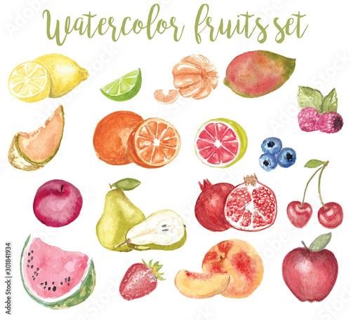 watercolor fruit illustration set