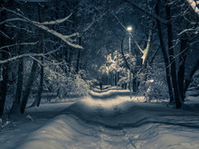 Late Winter Evening In The City Park. On The Snow-covered Pathway A Woman Leaves Into The Distance