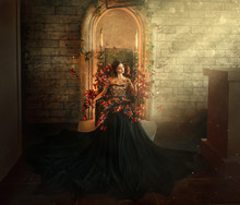 Gothic Dark Queen Sits In Cast...