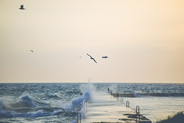 Fototapeta Industrialny Beautiful shot of sea wave hitting the pathway with seagulls flying over it