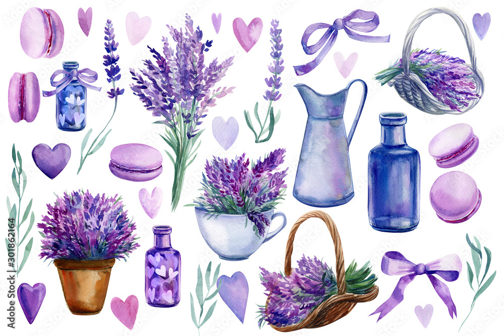 Fototapety, obrazy: set of elements of lavender flowers on an isolated white background, a basket with lavender, vase, bottle, hearts, bouquet, macarons, watercolor illustration, hand drawing