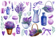 set of elements of lavender flowers on an isolated white background, a basket with lavender, vase, bottle, hearts, bouquet, macarons, watercolor illustration, hand drawing