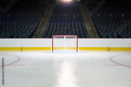 An empty net in a hockey arena Canvas Print