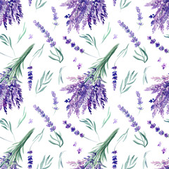 Fototapeta Lawenda seamless pattern, lavender watercolor on an isolated white background, hand drawing