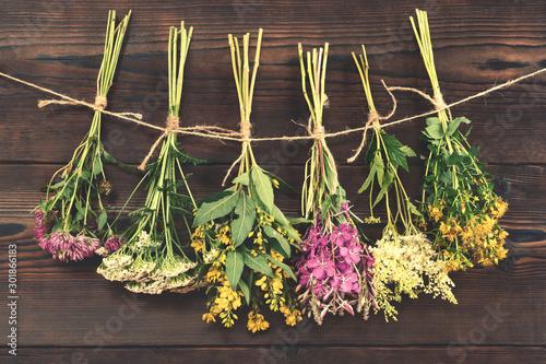Fototapeta deski  bundles-of-medicinal-herbs-dried-near-a-dark-wooden-wall-alternative-medicine-and-herbal-treatment