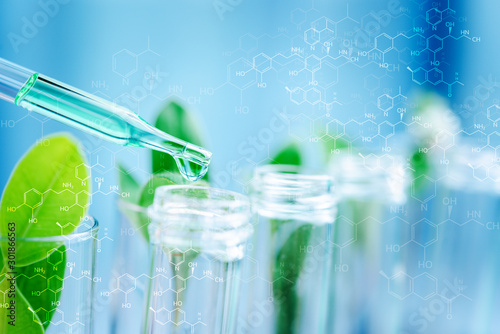 Obraz na plátně Dropper over test tube dropping sample chemical into sample herbal plaint , biotechnoloy research concept