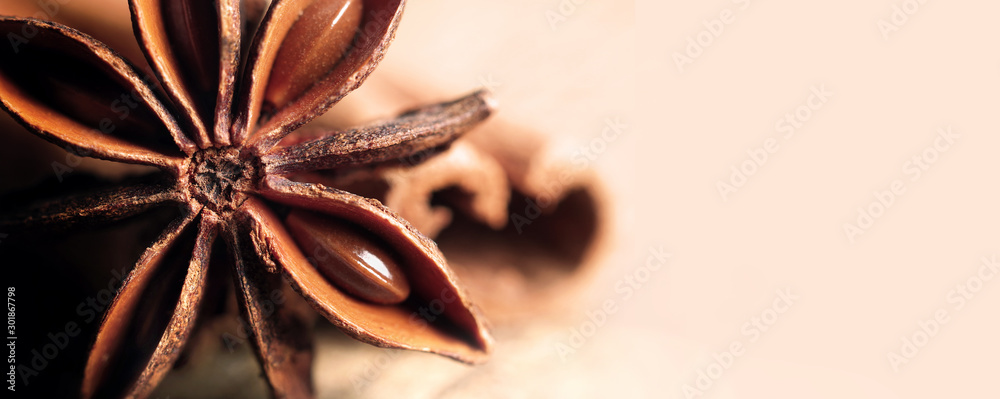 Fototapeta anise star and cinnamon close up. copy spaces
