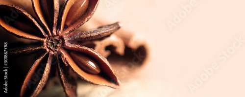 Obraz anise star and cinnamon close up. copy spaces - fototapety do salonu