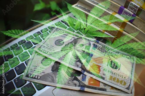 Photo  Cannabis Marijuana Stock Profits Concept
