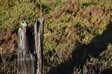 An Old Fencepost Against A Bac...