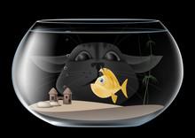 Aquarium. The Cat Looks Into T...