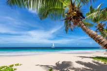 Sandy Beach With Palm Trees And A Sailing Boat In The Blue Sea On Paradise Island. Fashion Travel And Tropical Beach Concept.