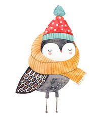owl in a scarf and hat - watercolor drawing