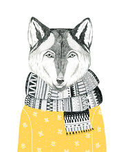 Hand Drawn Wolf Portrait In A ...
