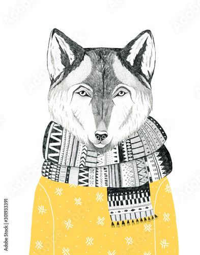 portret-wilka-w-szaliku-i-swetrze