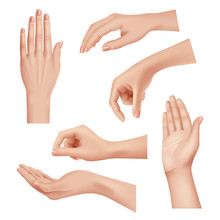Hands Gestures. Female Caring ...