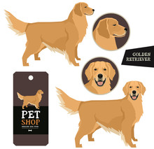 Dog Breeds Set Vector Illustration Golden Retriever Isolated Objects