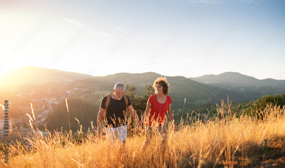 Fototapety, obrazy: Senior tourist couple travellers hiking in nature at sunset, holding hands.