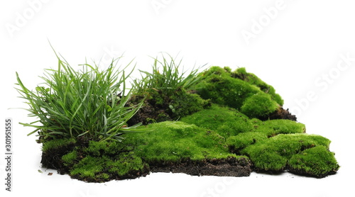 Fototapeta Green moss on soil, dirt pile with grass isolated on white background obraz
