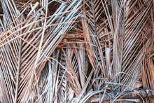 Dry Palm Leaves Wall Texture Background
