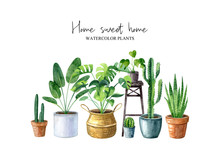 Home Sweet Home-watercolor Illustration With Home Plants (monstera, Cactus, Sansevieria) Isolated On White Background. Composition In Hygge Style. Scandinavian Interior. Boho Lifestyle.