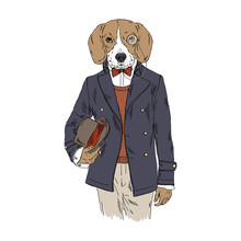 Humanized Beagle Breed Dog Dre...