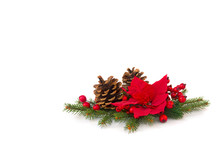 Christmas Decoration. Flower Of Red Poinsettia, Cones Pine, Branch Christmas Tree, Red Berries On A White Background With Space For Text