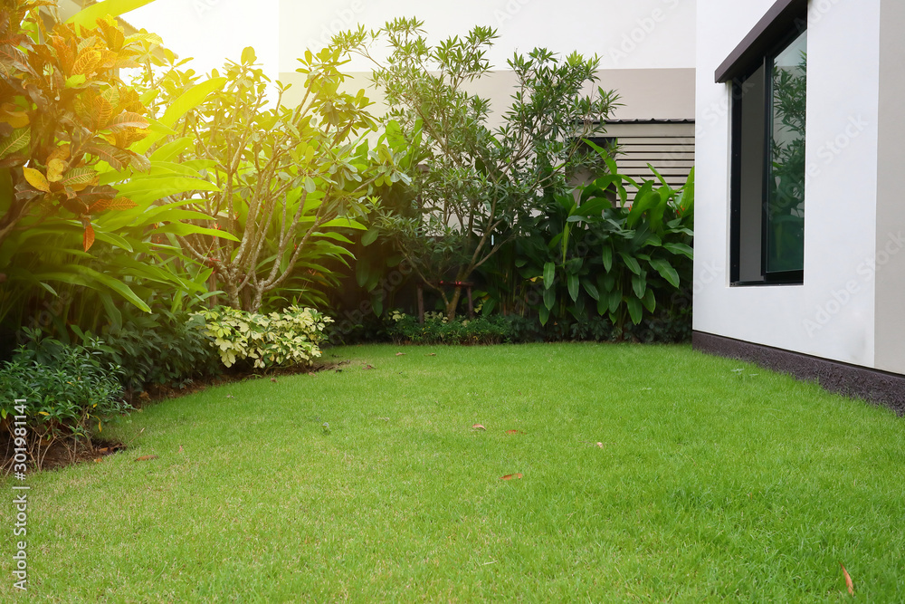 Fototapeta lawn landscaping with green grass turf in garden home