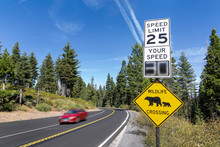 "A ""wildlife Crossing"" And 25MPH Speed Limit Sign By A Road With A Passing Car In Yosemite  National Park, California."