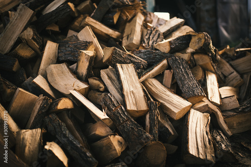 Foto op Plexiglas Brandhout textuur Pile of firewood on a heap. Coniferous and deciduous stacks of firewood.