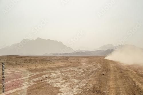 fototapeta na ścianę Trip to the Oriental desert Egypt near Safaga, Africa