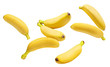 canvas print picture - Flying delicious ripe bananas, isolated on white background